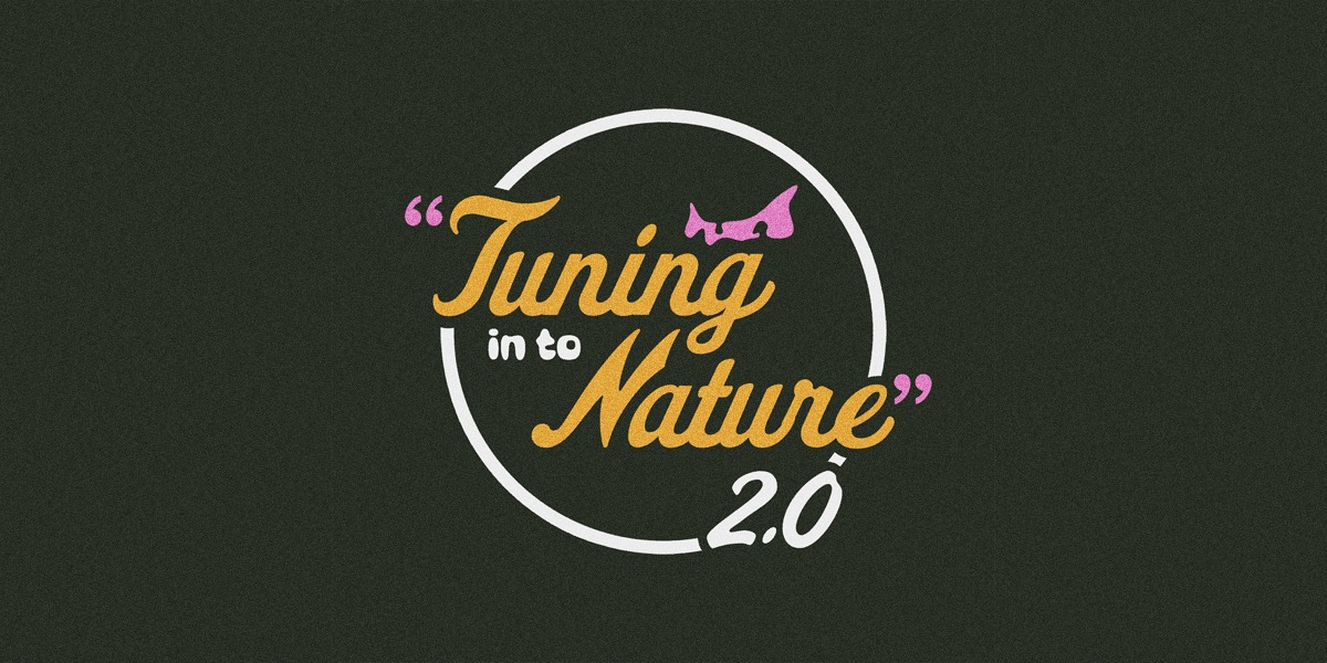 Tuning In To Nature